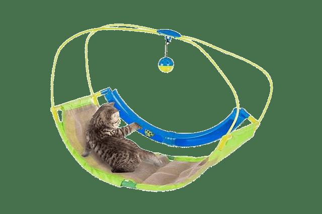 Petco cat toys