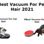 best vacuum for cat hair