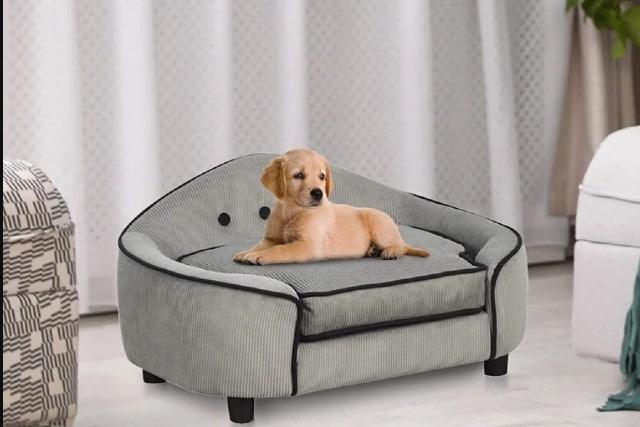 Modern Dog Furniture